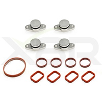 BMW manifold swirl flap blanks with gaskets
